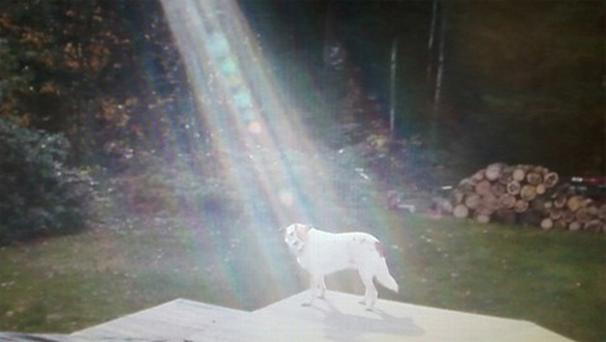 When ABC news sent a camera crew to do a follow-up on Hero an unexplained beam of light shone from the sky while the cameras were rolling