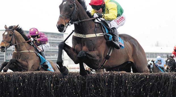Sizing Europe and jockey AndrewLynch, herewinning last season's Champion Chase, are heading to Sandown on Saturday