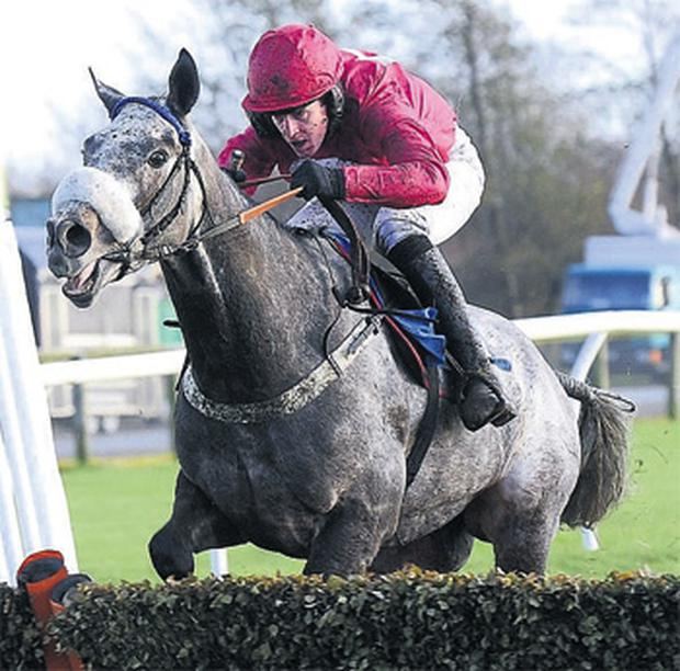 Bourne and Jason Maguire capture the novice hurdle at Catterick yesterday