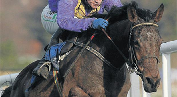 The Willie Mullins-trained So Young, here winning at Leopardstown last season under Paul Townend, can take the Listed hurdle at Thurles today for Ruby Walsh