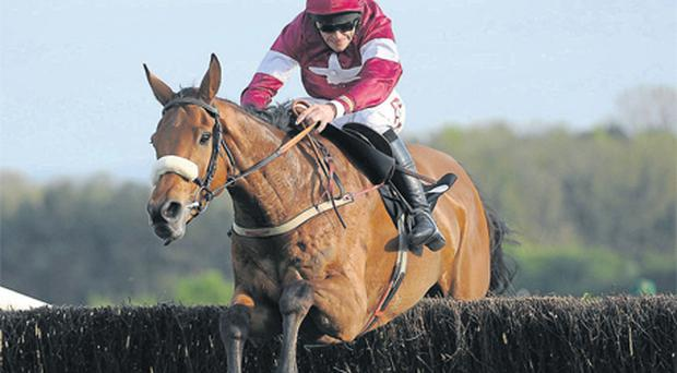 Quito DeLa Roque seen here winning at Punchestown with Davy Russell up will be aiming for similar success at Leopardstown today