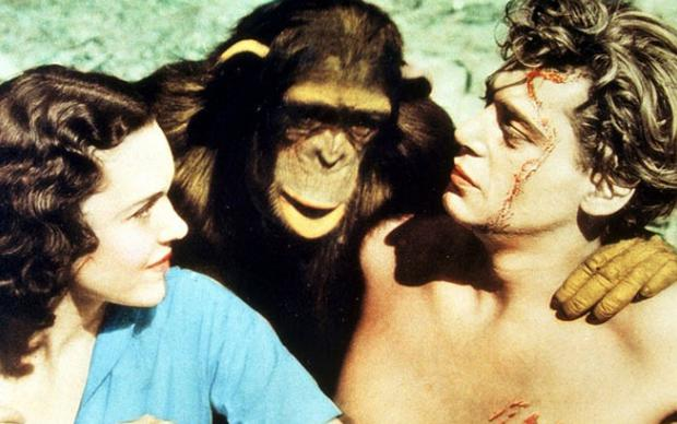 Maureen O'Sullivan, Cheeta and Johnny Weissmuller starring in the 1932 film Tarzan, the Ape Man. Photo: Getty Images
