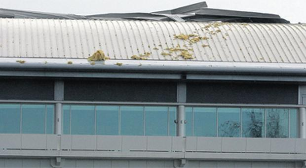 The section of the Epsom grandstand roof which was badly damaged during yesterday's gale-force storm