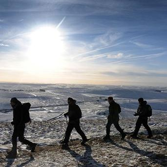 A regular brisk walk could keep colds away, but more strenuous exercise could make it easier to catch a bug