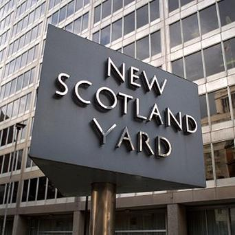 A Scotland Yard officer has apologised from a church pulpit to a mother wrongfully arrested for assault