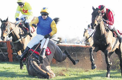 Captain Sunshine and Sam Thomas fall at the last at Kempton yesterday