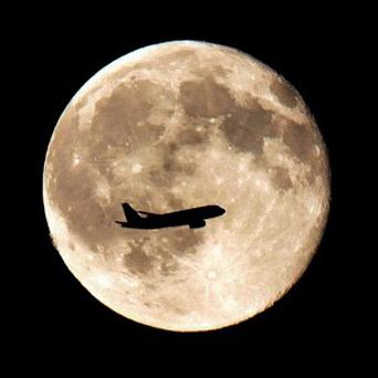 Young children have sky-high hopes for their holidays, with nearly half surveyed fancying a trip to the Moon