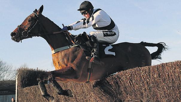 Golan Guy and Mark Quinlan sail over the last on the way to victory at Plumpton