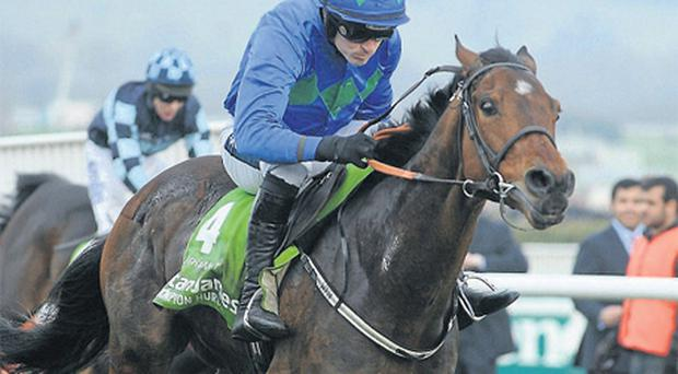 Hurricane Fly and Ruby Walsh are on target for a Champion Hurdle repeat