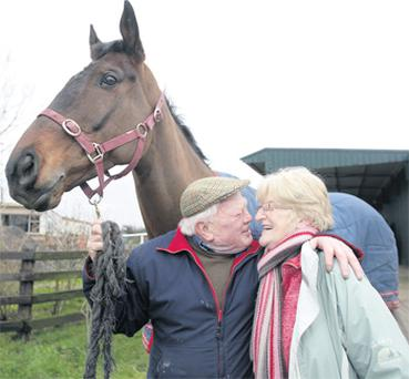 Peter Casey and wife Junie with race winner Flemenstar at their home near Stamullen, Co Meath, yesterday