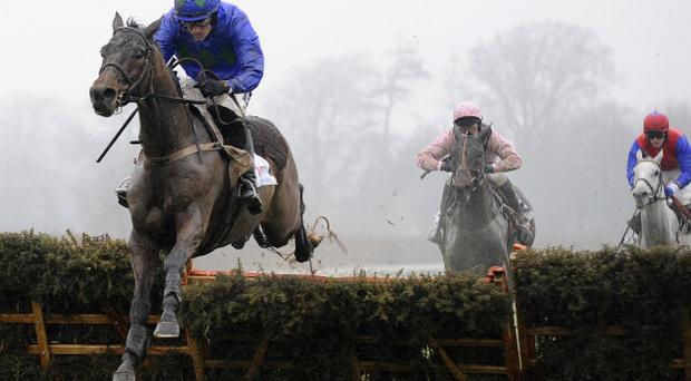 DUBLIN, IRELAND - JANUARY 29: Ruby Walsh riding Hurricane Fly clear the last to win The BHP Insurance Irish Champion Hurdle at Leopardstown racecourse on January 29, 2012 in Dublin, Ireland. (Photo by Alan Crowhurst/Getty Images)