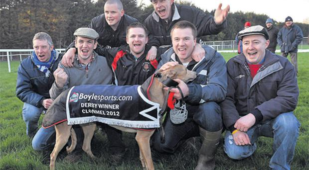 Members of the winning syndicate celebrate after Go Home Hare won the Derby at the Irish National Coursing meeting in Clonmel yesterday
