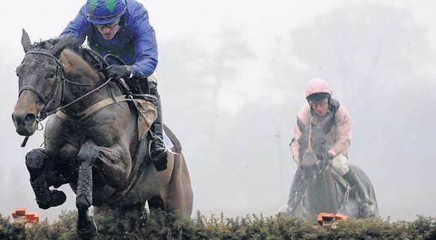Tony McCoy on Hurricane Fly: 'I sat in the weighing-room at Leopardstown watching him go round and thought there's not much hope for the rest of us'