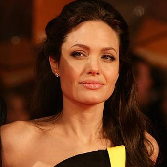Angelina Jolie would like to direct again in future