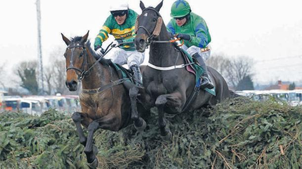 Black Apalachi (right) on the way to finishing second to Don't Push It in the Grand National in 2010
