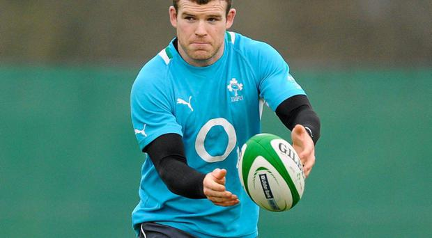 9 February 2012; Ireland's Gordon D'Arcy in action during squad training ahead of their side's RBS Six Nations Rugby Championship game against France on Saturday. Ireland Rugby Squad Training, Carton House, Maynooth, Co. Kildare. Picture credit: Brendan Moran / SPORTSFILE