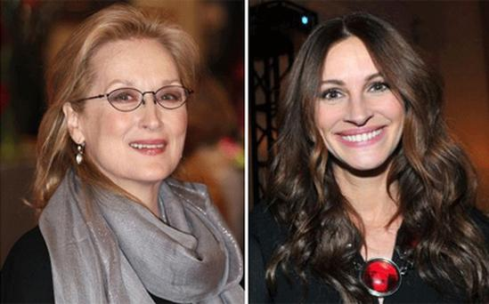 Julia Roberts, right, said she is 'proud' to co-star alongside Meryl Streep, a fellow Oscar-winner. Photo: Getty Images