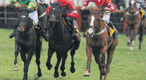 Zarkandar, with Ruby Walsh up (centre) on the way to winning The Betfair Hurdle at Newbury yesterday
