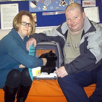 Maxine and Allan Mullen are reunited with their pet cat Sid