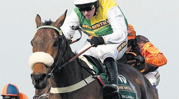 Last year's National winner Ballabriggs is to have his prep run this weekend
