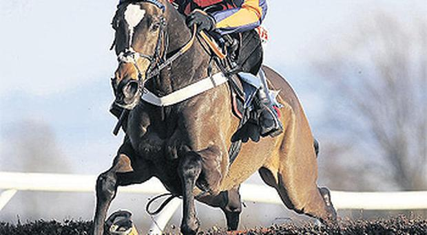 Jason Maguire guides Star In Flight to victory for Donald McCain at Catterick