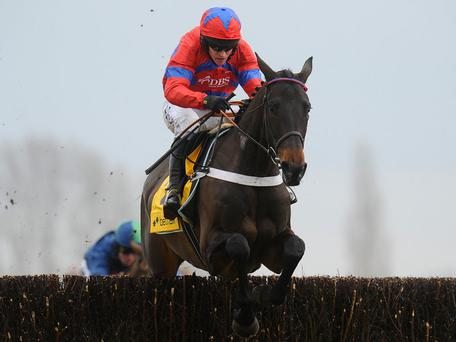 Sprinter Sacre: Different horse this year