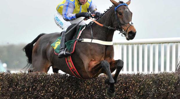 Peddlers Cross: Could gallop at Bangor