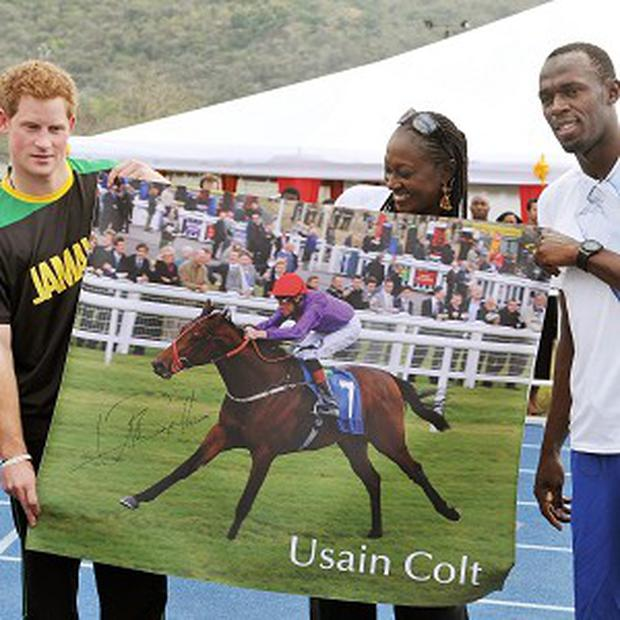Prince Harry with Olympic sprint champion Usain Bolt and a poster of racehorse Usain Colt