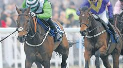 Rock On Ruby (left) has a good Champion Hurdle each-way chance