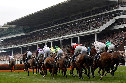 Runners and riders approach the second fence in the Supreme Novices Hurdle Race, the opening race of the 2012 Cheltenham Festival