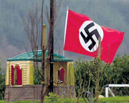 A swastika is seen in the back garden of a house near Bagenalstown, Co Carlow, during the week