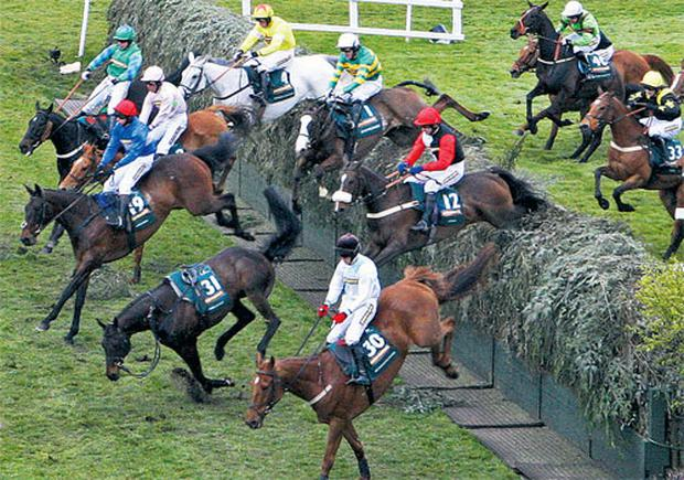 Synchronised, under Tony McCoy (white cap, green and yellow hoops), about to come to grief at Becher's Brook.