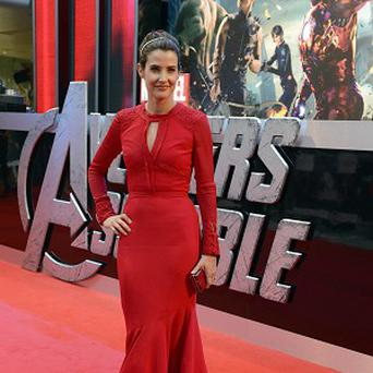 Cobie Smulders would be happy to star in more Avengers films