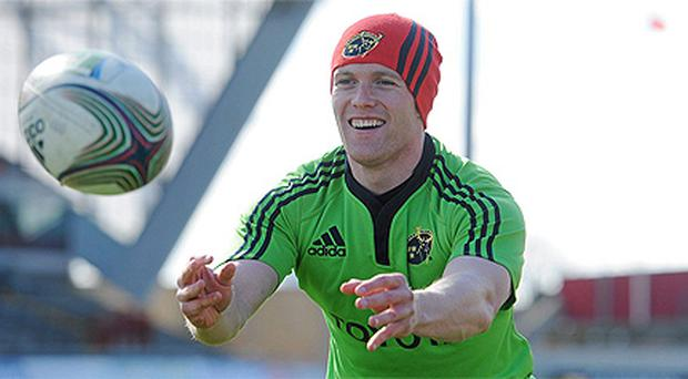 Keith Earls is warming to his new role as a father figure, on and off the pitch