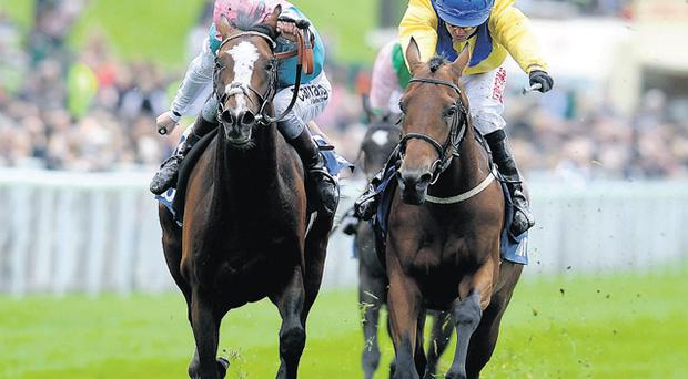 Tony Hamilton riding Mickdaam (right) on the way to winning The Chester Vase from Model Pupil yesterday