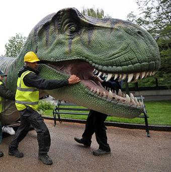 A animatronic tyrannosaurus rex arrives at Bristol Zoo Gardens, one of 12 which are to be part of the zoo's new exhibition DinoZoo