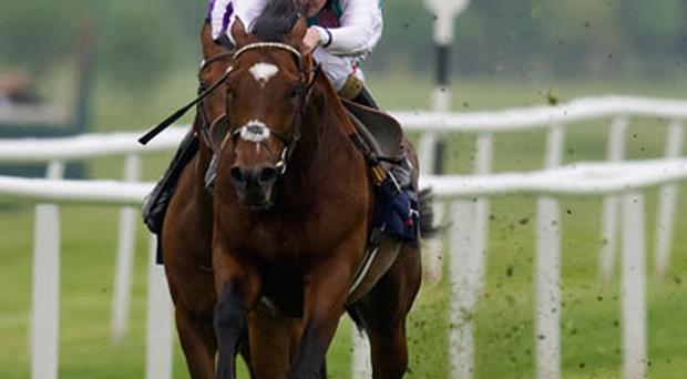Tom Queally riding Frankel win The JLT Lockinge Stakes at Newbury racecourse in Newbury, England. Photo: Getty Images