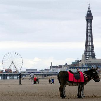 This year's illuminations in Blackpool will see people able to add their face to the display