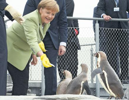 German Chancellor Angela Merkel must realise that overall EU stability depends on a secure peripheral zone.