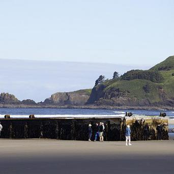 A massive dock with Japanese lettering that washed ashore on Agate Beach, Oregon (AP/The Oregonian, Thomas Boyd)