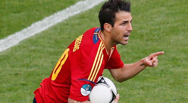 Spain's Cesc Fabregas celebrates after scoring