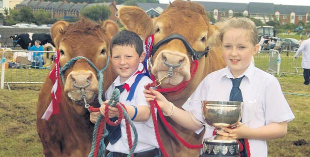 DOUBLE JOY: Daniel and Rachel Maloney from Ardnacrusha, Co Clare, with their champion and reserve champion Limousins at the Agricultural show at Clonakilty, Co Cork, on Sunday Photo: DENIS BOYLE