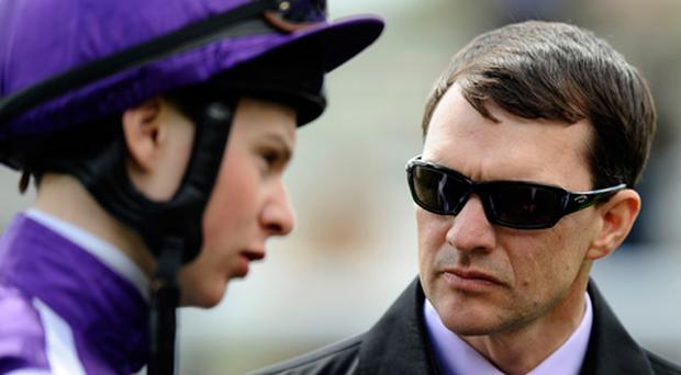 Aidan O'Brien (R) chats with Joseph O'Brien at York racecourse. Photo: Getty Images