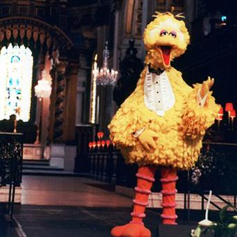 Big Bird and his Sesame Street pals are set to make a film