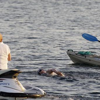 Marathon swimmer Penny Palfrey has ended her bid to complete a record swim from Cuba to Florida (AP)