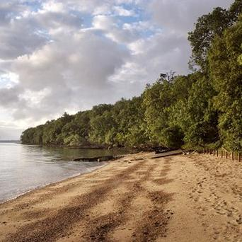 Queen Victoria's private beach is to be opened to the public for the first time