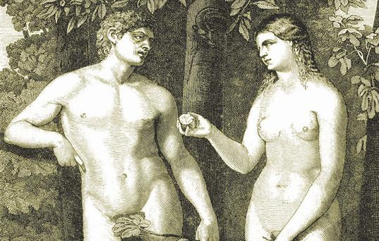 The story of Adam and Eve does not prove that God is against same-sex marriage
