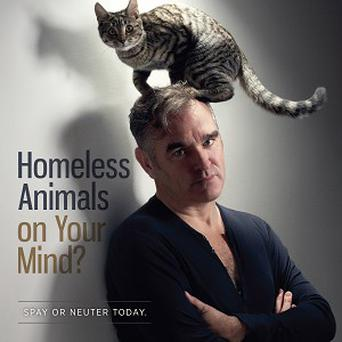 Morrissey promotes a campaign by animal rights group Peta