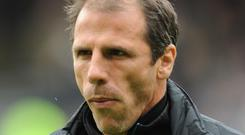 Gianfranco Zola could make a return to management if Harry Redknapp retires.