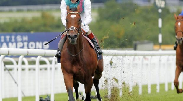 Frankel, with Tom Queally onboard